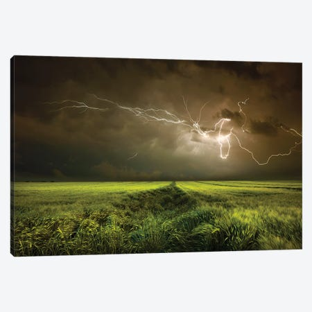 Electrically In Summer Canvas Print #NCS6} by Nicolas Schumacher Canvas Artwork