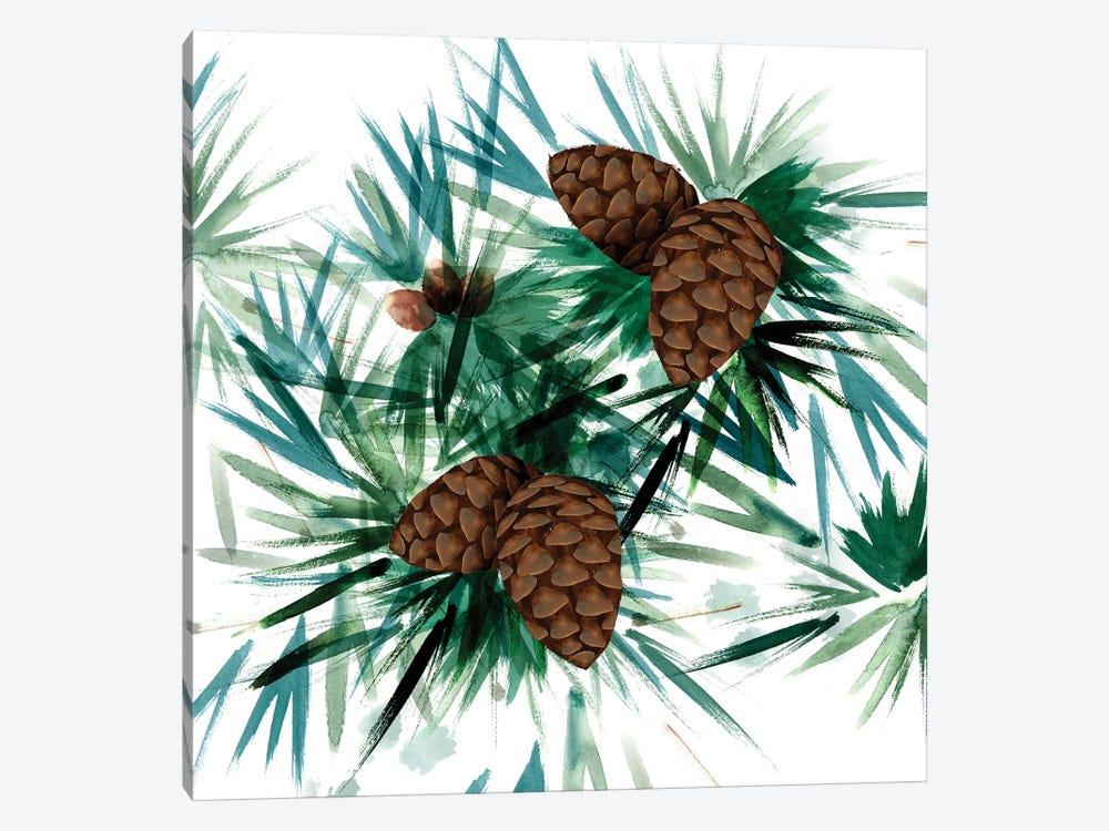 Christmas Hinterland II - Pine Cones by Noonday Design 1-piece Canvas Wall Art
