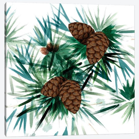 Christmas Hinterland II - Pine Cones Canvas Print #NDD112} by Noonday Design Canvas Artwork