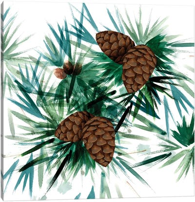 Christmas Hinterland II - Pine Cones Canvas Art Print