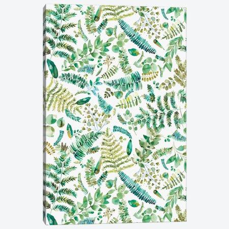 Botanical Leaves And Plants Bio Green Canvas Print #NDE144} by Ninola Design Art Print