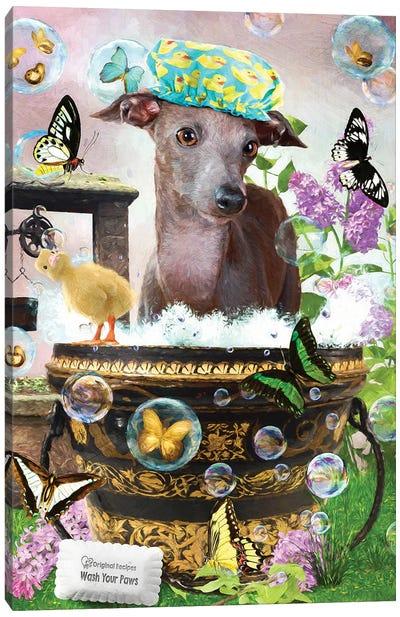 Italian Greyhound Wash Your Paws Canvas Art Print
