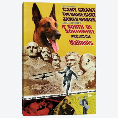 Belgian Malinois North By Northwest Canvas Print #NDG1033} by Nobility Dogs Canvas Art