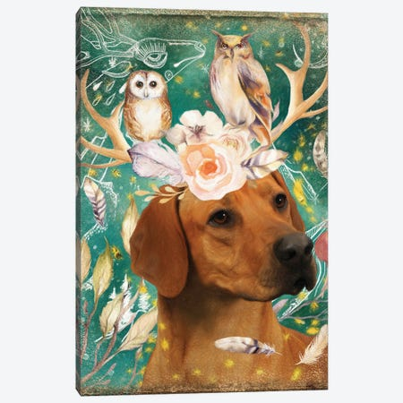 Rhodesian Ridgeback With Antlers And Owls Canvas Print #NDG1134} by Nobility Dogs Canvas Art