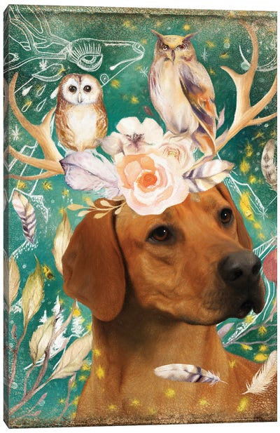 Rhodesian Ridgeback With Antlers And Owls Canvas Art Print