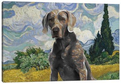 Weimaraner Wheat Field With Cypresses Canvas Art Print