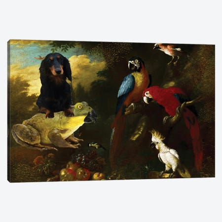 Longhaired Dachshund And Frog Canvas Print #NDG1418} by Nobility Dogs Canvas Artwork