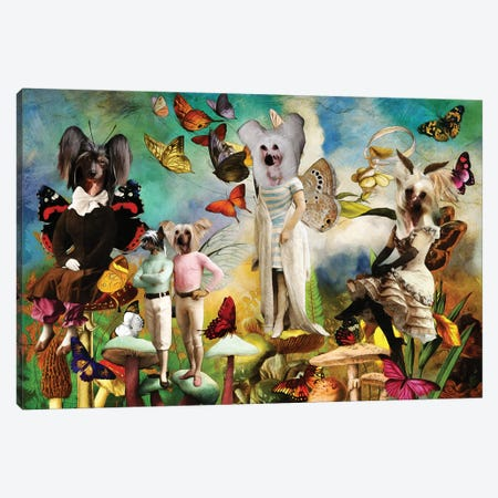 Chinese Crested Dog Fairy Queen Canvas Print #NDG1517} by Nobility Dogs Canvas Art