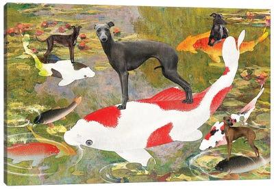 Italian Greyhound Claude Monet Waterlilies Koi Canvas Art Print