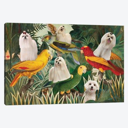 Maltese Dog Henri Rousseau Parrots Canvas Print #NDG1528} by Nobility Dogs Canvas Art
