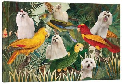 Maltese Dog Henri Rousseau Parrots Canvas Art Print