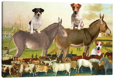 Jack Russell Terrier The Cornell Farm Canvas Art Print