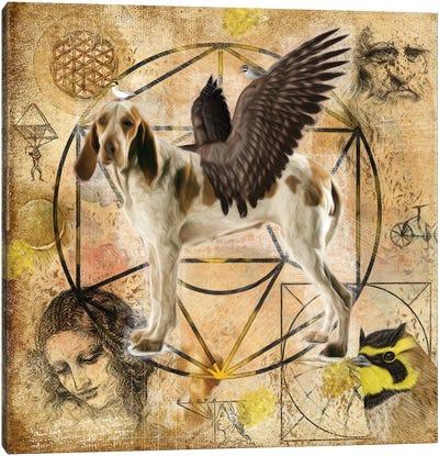 Bracco Italiano Angel Da Vinci Canvas Art Print