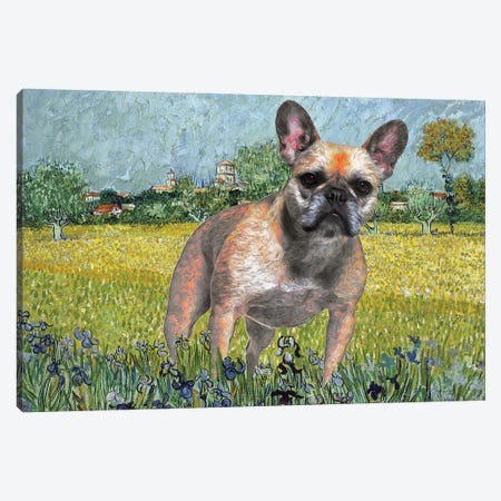 French Bulldog View Of Arles With Irises Canvas Print #NDG315} by Nobility Dogs Canvas Art Print