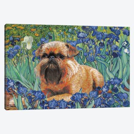 Brussels Griffon Irises Canvas Print #NDG32} by Nobility Dogs Art Print