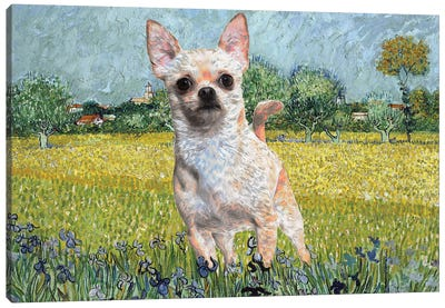 Chihuahua View Of Arles With Irises Canvas Art Print