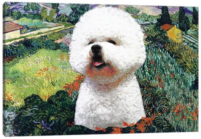 Bichon Frise Field With Poppies Canvas Art Print