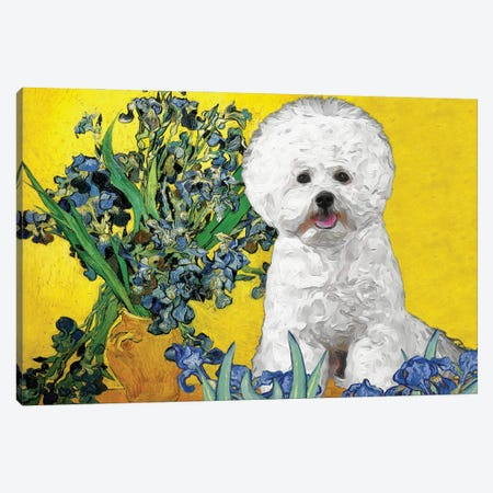 Bichon Frise Irises In A Vase Canvas Print #NDG383} by Nobility Dogs Canvas Art Print