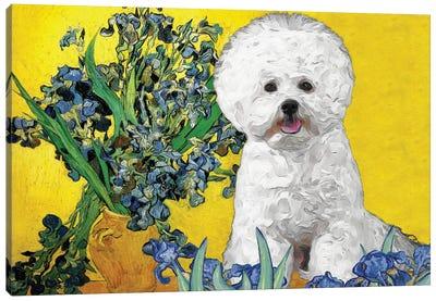 Bichon Frise Irises In A Vase Canvas Art Print