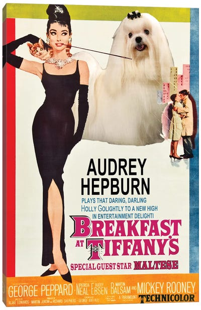 Maltese Dog Breakfast At Tiffany Canvas Art Print