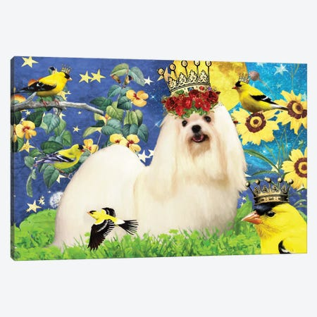 Maltese Dog And American Goldfinch Canvas Print #NDG400} by Nobility Dogs Canvas Artwork