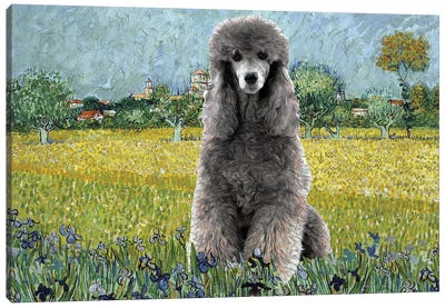 Poodle View Of Arles With Irises Canvas Art Print
