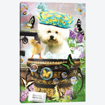 Bichon Frise Wash Your Paws Canvas Print #NDG40} by Nobility Dogs Canvas Wall Art