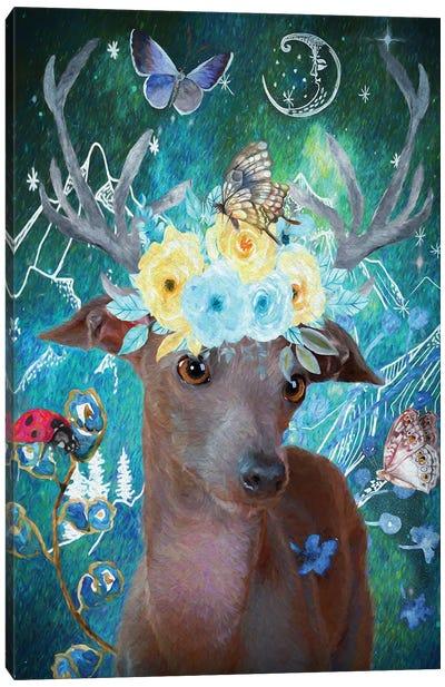 Italian Greyhound And Butterflies Canvas Art Print