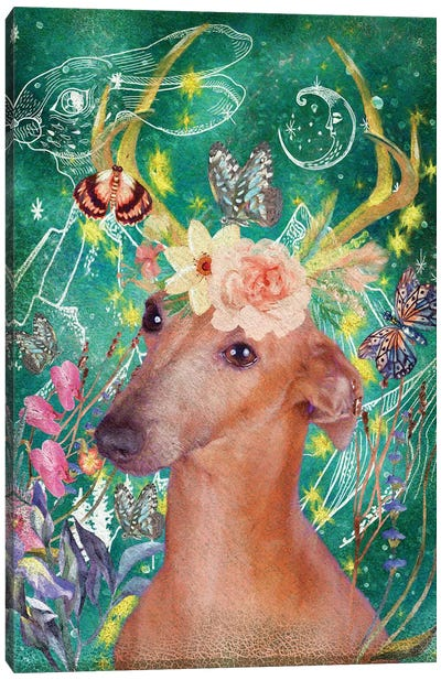Italian Greyhound Once Upon A Time Canvas Art Print