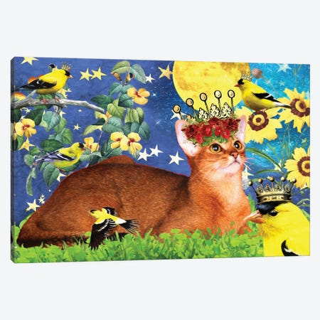 Abyssinian Cat And American Goldfinch Canvas Print #NDG507} by Nobility Dogs Canvas Art
