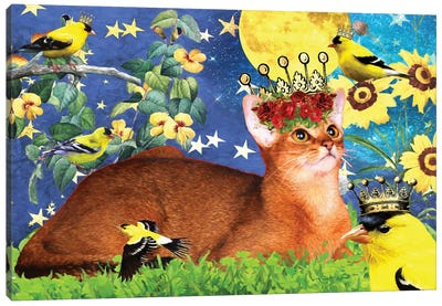 Abyssinian Cat And American Goldfinch Canvas Art Print