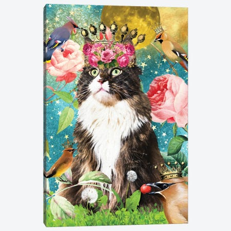 Maine Coon Cat And Waxwing Canvas Print #NDG513} by Nobility Dogs Canvas Artwork