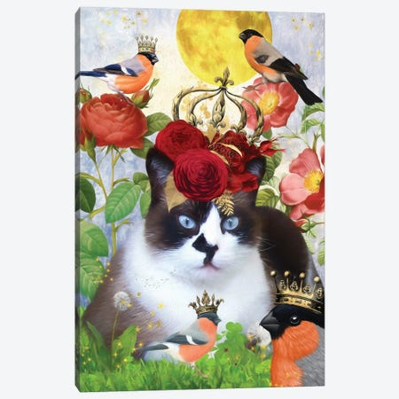 Snowshoe Cat And Bullfinch Canvas Print #NDG519} by Nobility Dogs Canvas Art