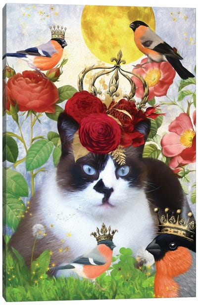 Snowshoe Cat And Bullfinch Canvas Art Print