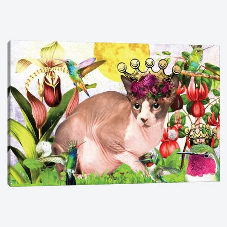 Sphynx Cat And Hummingbird Canvas Print #NDG520} by Nobility Dogs Canvas Print