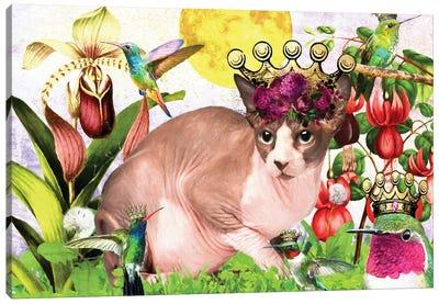 Sphynx Cat And Hummingbird Canvas Art Print