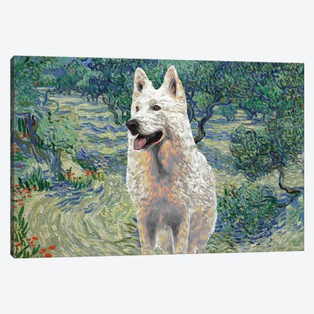 White Shepherd Olive Orchard Canvas Print #NDG527} by Nobility Dogs Canvas Artwork