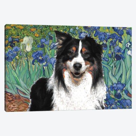 Australian Shepherd Aussie Irises Canvas Print #NDG584} by Nobility Dogs Canvas Artwork