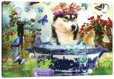 Siberian Husky Wash Your Paws Canvas Art Print