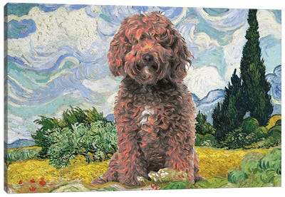 Labradoodle Wheat Field With Cypresses Canvas Art Print