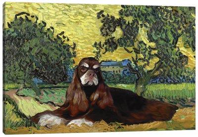 American Cocker Spaniel Auvers At Sunset Canvas Art Print