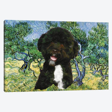 Portuguese Water Dog Olive Grove Canvas Print #NDG883} by Nobility Dogs Canvas Artwork