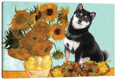 Shiba Inu Sunflowers Canvas Art Print