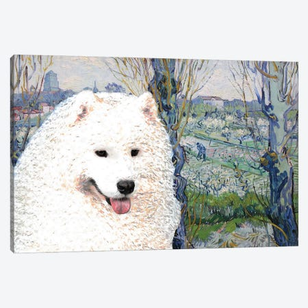 Samoyed Orchard In Blossom Canvas Print #NDG948} by Nobility Dogs Art Print