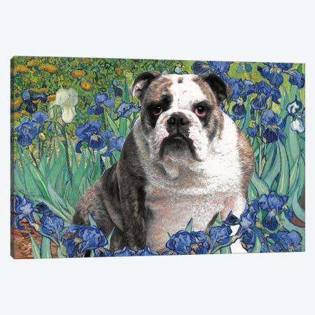 English Bulldog Irises Canvas Print #NDG94} by Nobility Dogs Canvas Wall Art