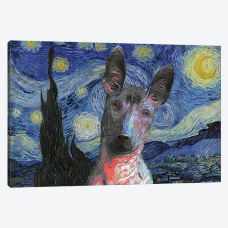 Xoloitzcuintli Starry Night Canvas Print #NDG957} by Nobility Dogs Canvas Print
