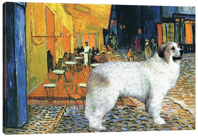 Great Pyrenees Cafe Terrace At Night Canvas Art Print