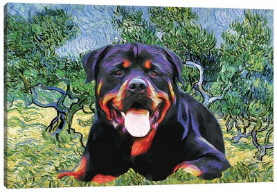 Rottweiler Olive Grove Canvas Art Print