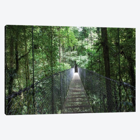 Mistico Arenal Hanging Bridges Park in Arenal, Costa Rica. Canvas Print #NDS11} by Michele Niles Art Print