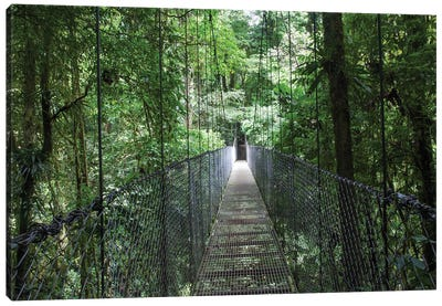 Mistico Arenal Hanging Bridges Park in Arenal, Costa Rica. Canvas Art Print